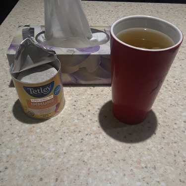 Tetley Super Herbal Tea IMMUNE Lemon & Echinacea with Zinc