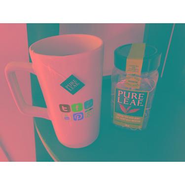 Pure Leaf Green Tea with Mint